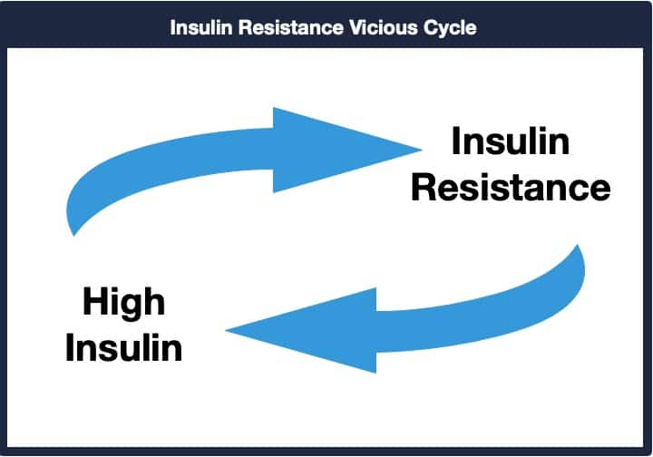 Insulin Resistance to High Insulin Vicious Cycle