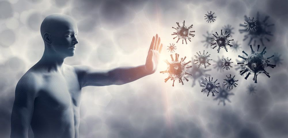 The Immune System Protects Your from Pathogens