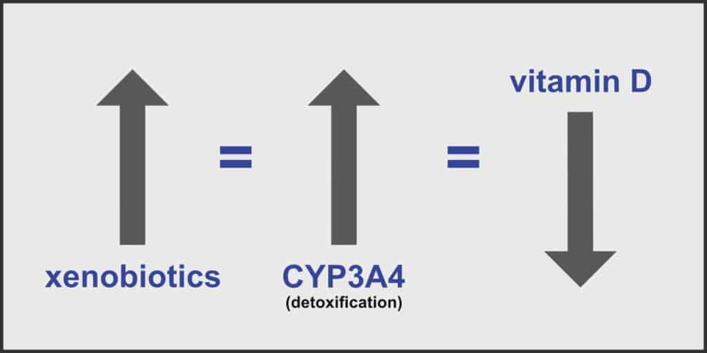 A Rise in Xenobiotics Causes a Rise in CYP3A4 and a Reduction of Vitamin D Levels